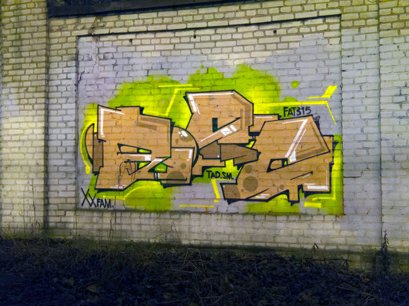bios_tad_graffiti_fire_at_will_mtn_2