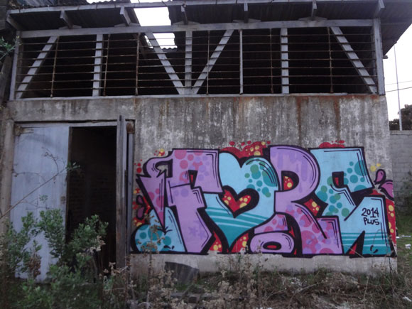 fore_graffiti_fire_at_will_mtn_