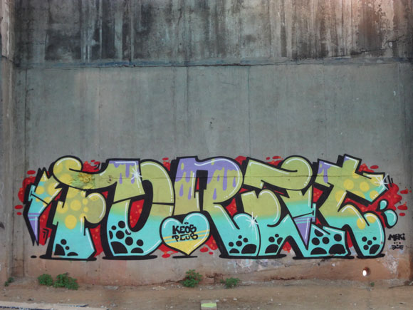 fore_graffiti_fire_at_will_mtn_16